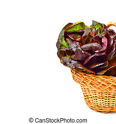 Red cabbage lettuce in basket - Red cabbage lettuce in...