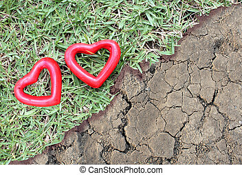 two red heart on the grass and arid
