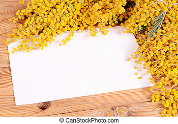 Yellow mimosa on wooden boards close up