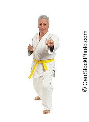 Senior man in karate pose on white background