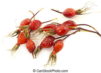 Ripe berries of wild rose - A branch of wild rose with ripe...