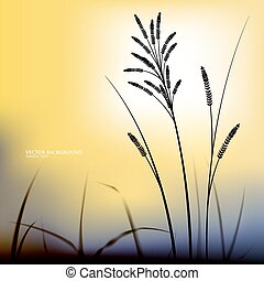 Vector natural background evening. The grass on the...