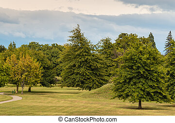 parkland with oak trees in early autumn