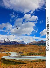 Snow-capped mountains - Beautiful Patagonia. Snow-capped...