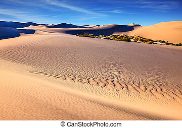 The solar morning in Death Valley - Mesquite Flat Sand Dunes...