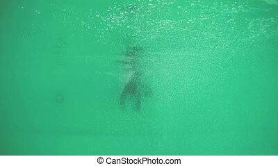Girl diving in swimming pool