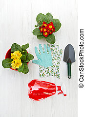 composition of gardening tools and flower on white wood