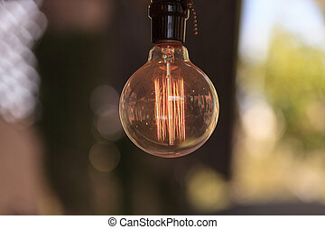 Ornamental light bulb lit up