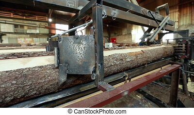 Sawing logs. View on machine in woodworking shop - Sawing...