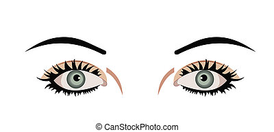 Realistic illustration of eyes are isolated on white...