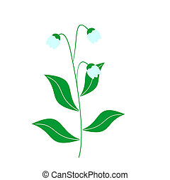 Illustration of lily of the valley - Vector illustration of...