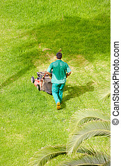 Man mowing grass - Man is mowing grass on a hot summer day