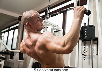 Young Man Doing Back Exercise on a Machine - Young...