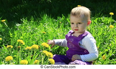 Funny girl on dandelion field in sunny day - Cute child...