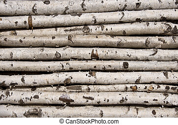 Not sawn birch logs For the kindling fire Close-up