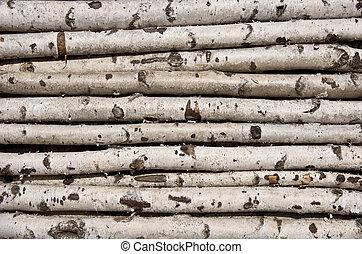 no, aserrado, Abedul, troncos, para, leña menuda,...