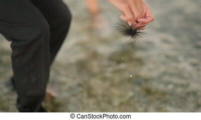 Guy Shows A Sea Hedgehog To The Girl.