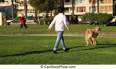 Child playing with his dog and having fun at the park