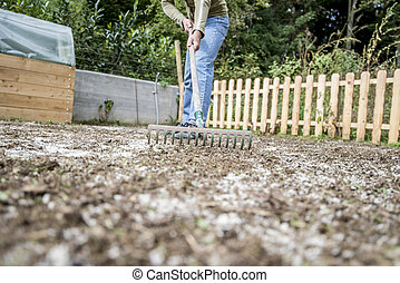 Man doing yard work raking the ground - Low angle view of a...