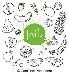 Vector Hand Drawn Fruits