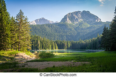 Small lake in the mountain national park Durmitor, Zminje...