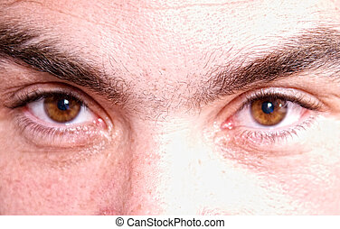 close up of brown eyes - deatailed image of close up of a...