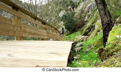 Paiva Walkways are located on the left bank of the Paiva...