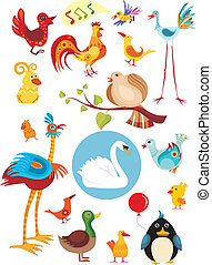 bird set - vector illustration of a bird set
