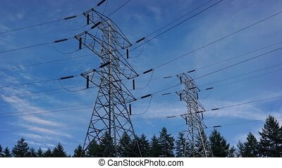 Power Lines Through The Forest - Large power lines and...