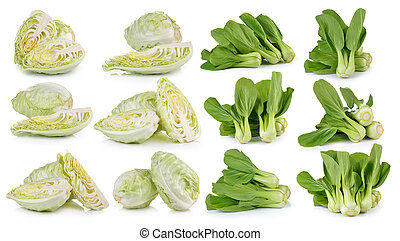 Cabbage and Bok choy vegetable on white background