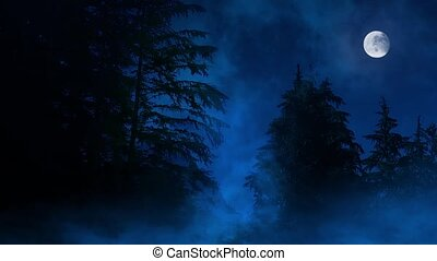 Night Forest Misty Swamp And Moon - Full moon illuminates...