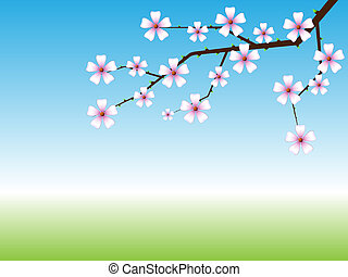 Spring background with blossoming tree branch with copy...