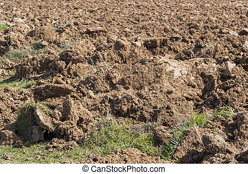 Ploughed field - Detail of a ploughed field Photo taken in...