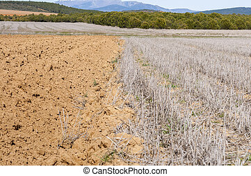 Fallow fields - Ploughed and stubble fields in an...