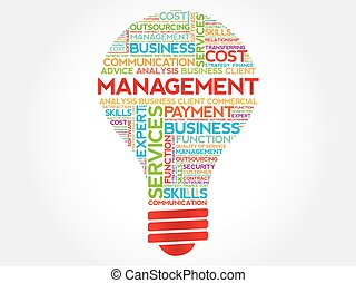 Management bulb word cloud, business concept