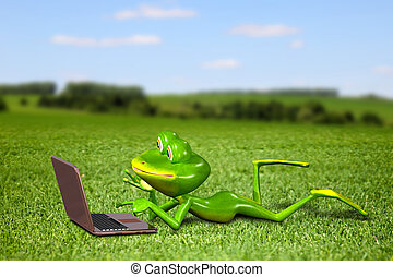 Frog with a laptop on the grass