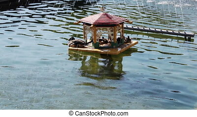 House for ducks in fountain - Fountains work and house for...