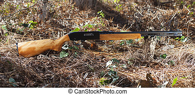 Firearm - Rimfire rifle for twenty two that is on a forest...