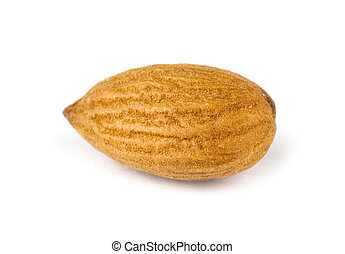 Almond - Single almond isolated on white