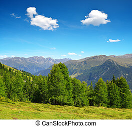 Summer landscape in Swiss Alps near Davos - canton...