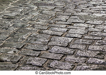 Cobblestone Street Detail View - Perspective view of...