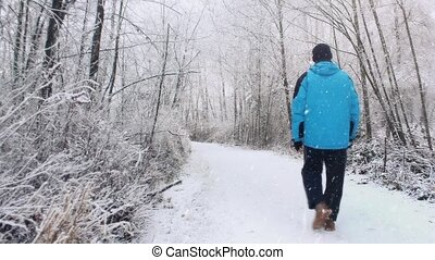 Man Walks In Woods In Snowstorm - Man in winter clothing...