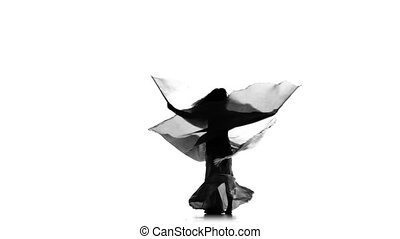 Beautiful exotic belly dancer girl dance with two wings on white, silhouette