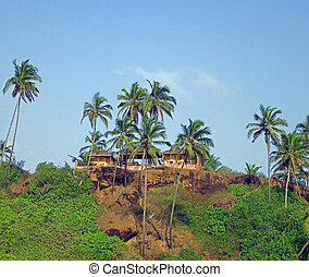 Lanscape of shacks and palms