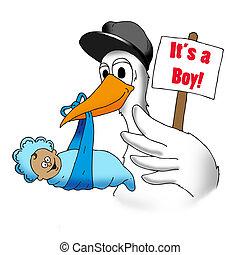 gólya, csecsemő, fiú