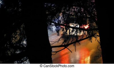 Cars Pass On Rainy Night Thru Trees - Cars driving in...