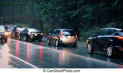Cars Passing Forest In The Rain - Many vehicles on wet road...