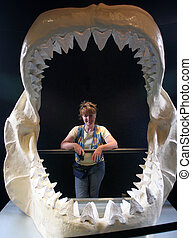 Large ancient jaws. - Gigantic jaws of times past in the...