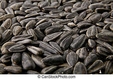 organic sunflower seed for background uses