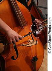 Woman Playing Cello in Symphony - Close-up view of woman...